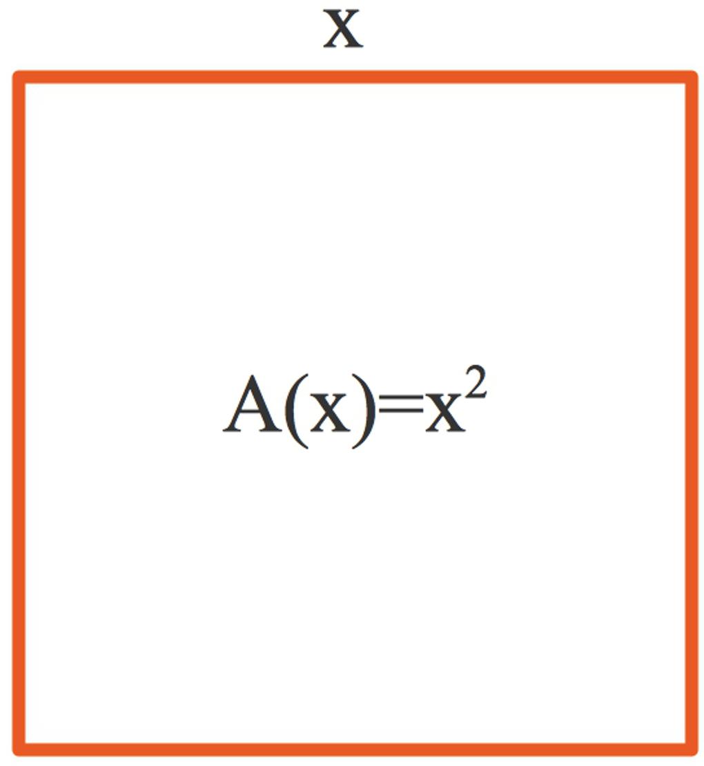 995_Quadrat.jpg