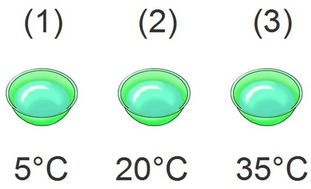 Temperatur und ihre Messung online lernen