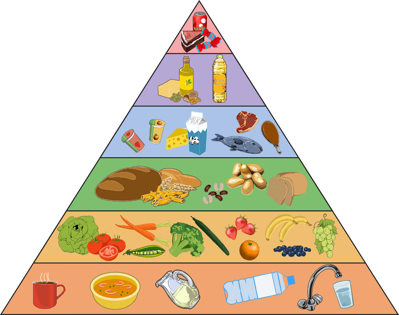 Zusammensetzung der Nahrung und gesunde Ernährung online lernen