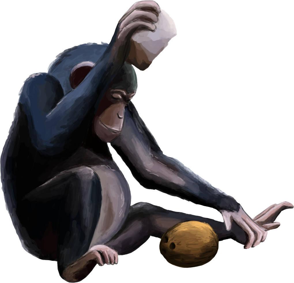 Werkzeugnutzung eines Schimpansen.jpg