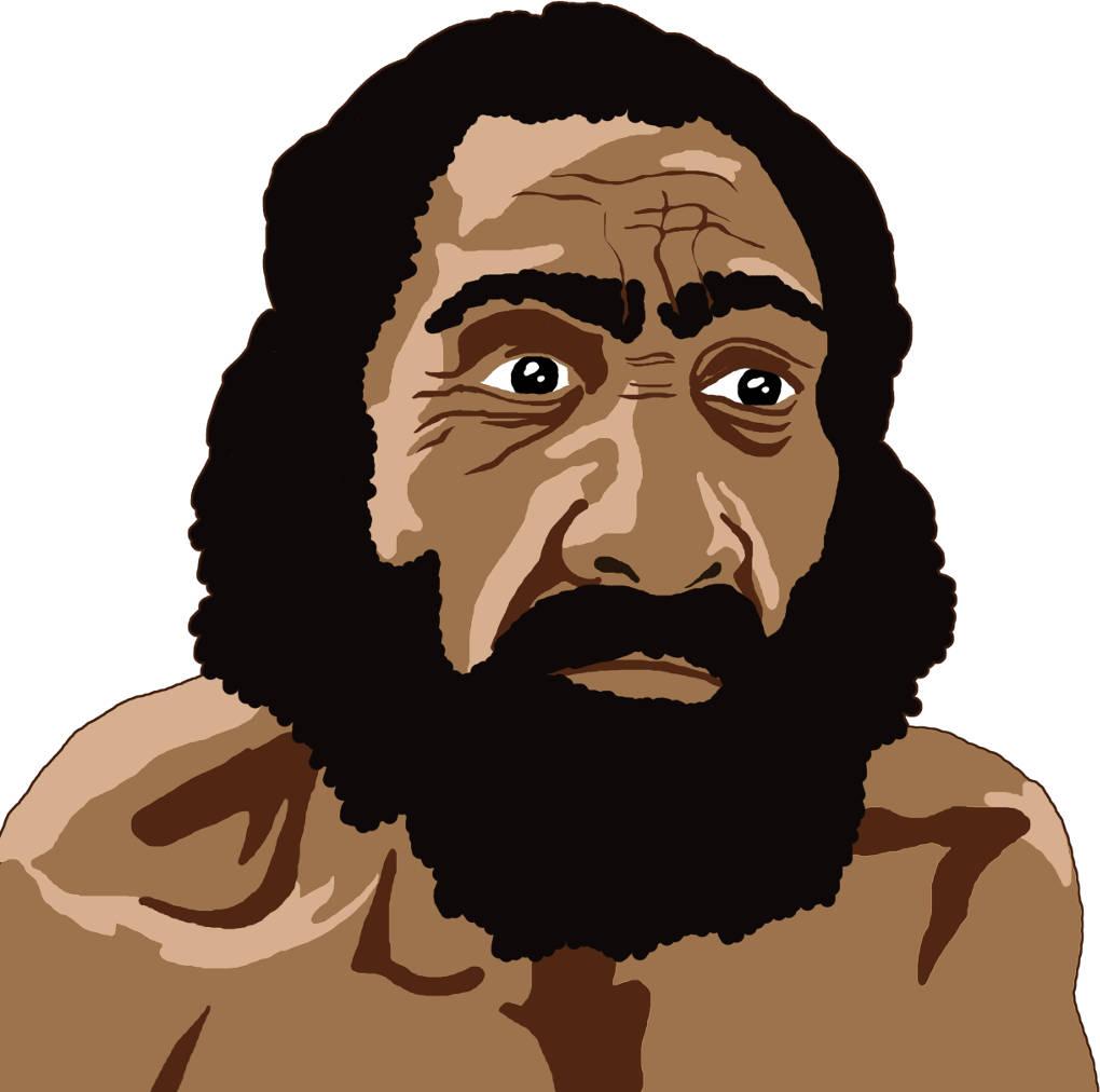 Homo neanderthalensis.jpg