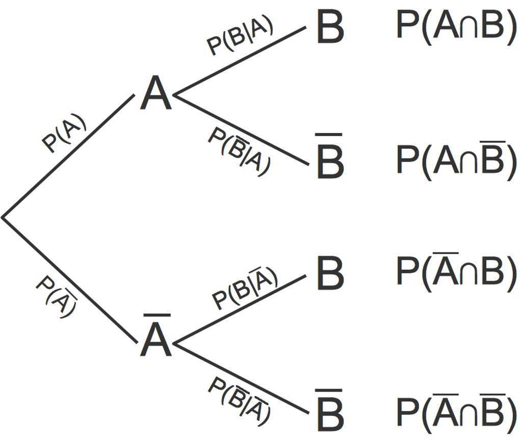 3081_Baumdiagramm.jpg