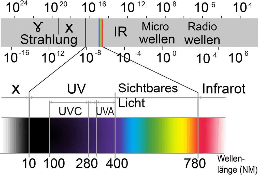 spektrum_(2).jpg