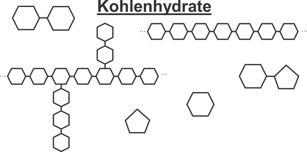 Übersicht_Kohlenhydrate.jpg