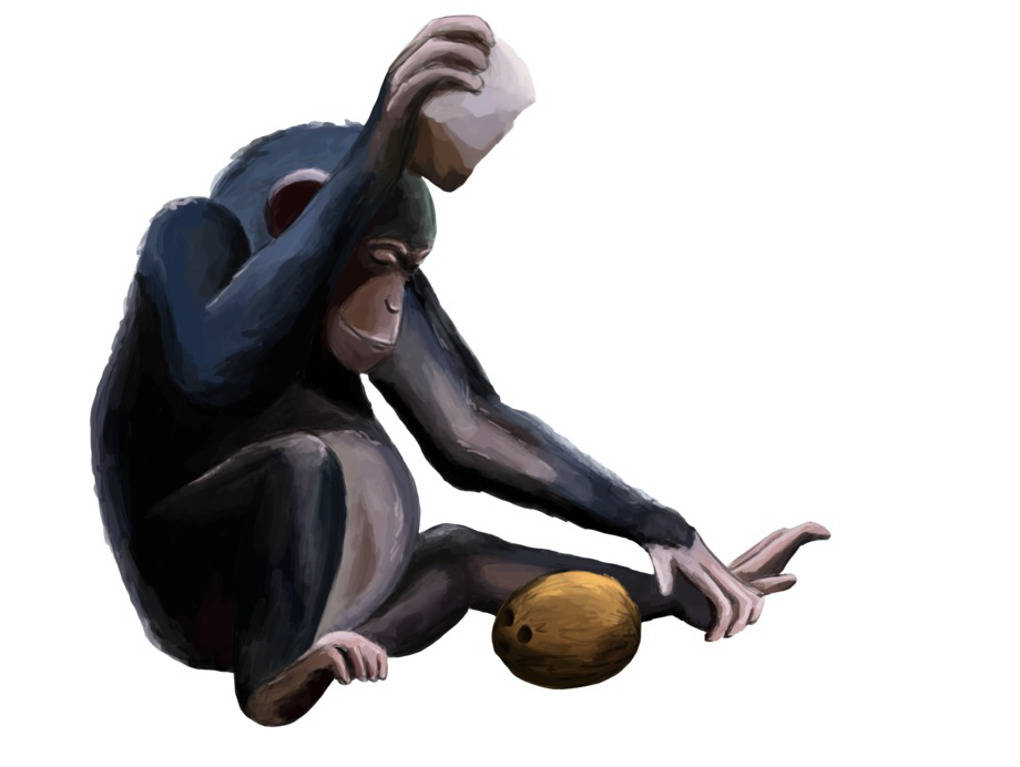 Schimpanse_mit_Werkzeug_Bild.jpg