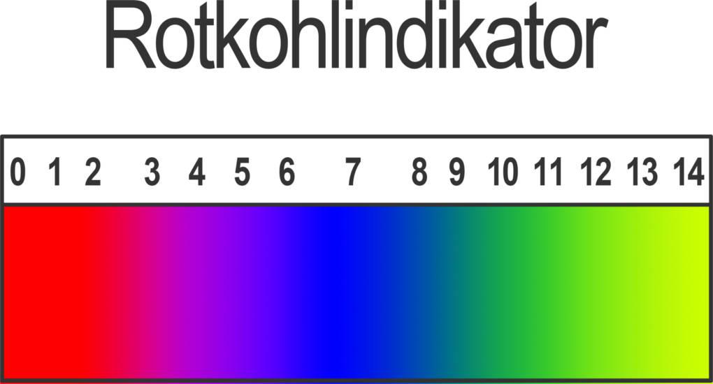 Enchanting Herstellung Rotkohlindikator Arbeitsblatt Mold ...