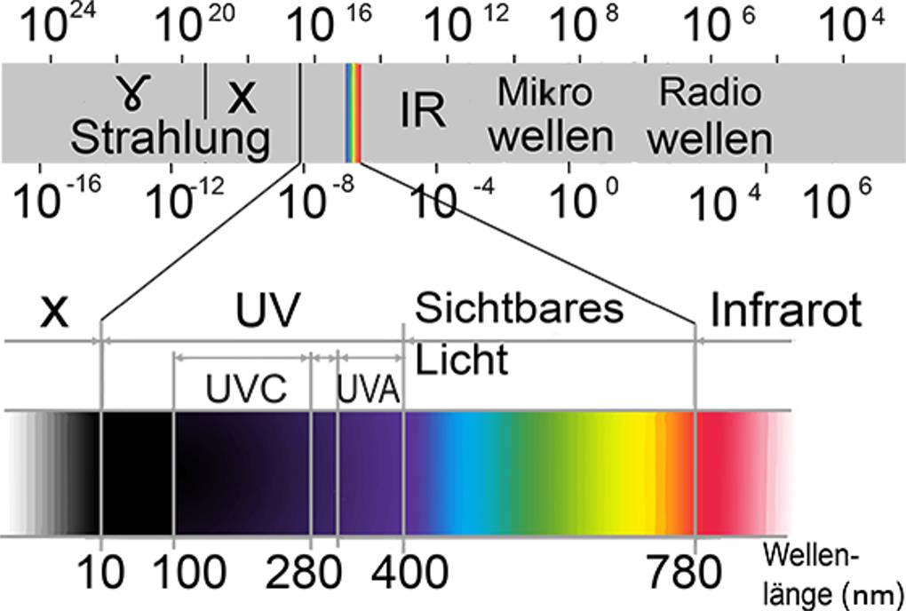 Spektrum.jpg
