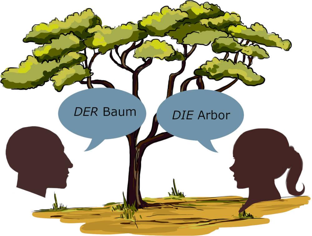Deklination_-_Baum.jpg