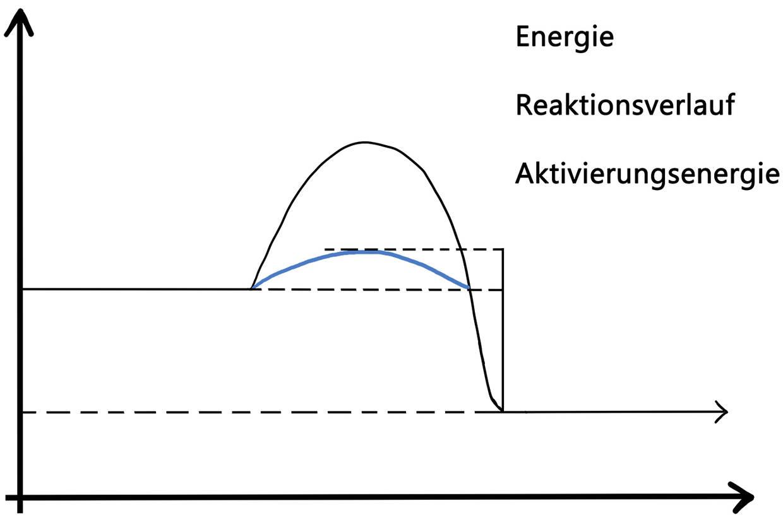 diagramm_biokatalysator_Kopie.jpg