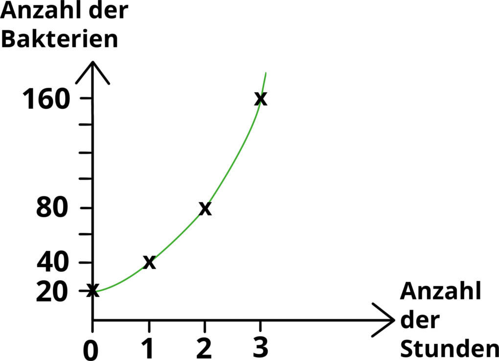 diagramm05.jpg