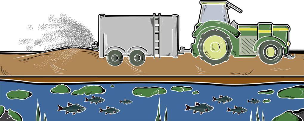 Gewässer_mit_Traktor___Fischen___Algen.jpg