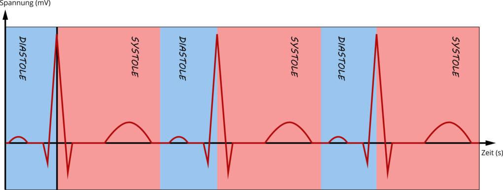 Das_Elektrokardiogramm.jpg