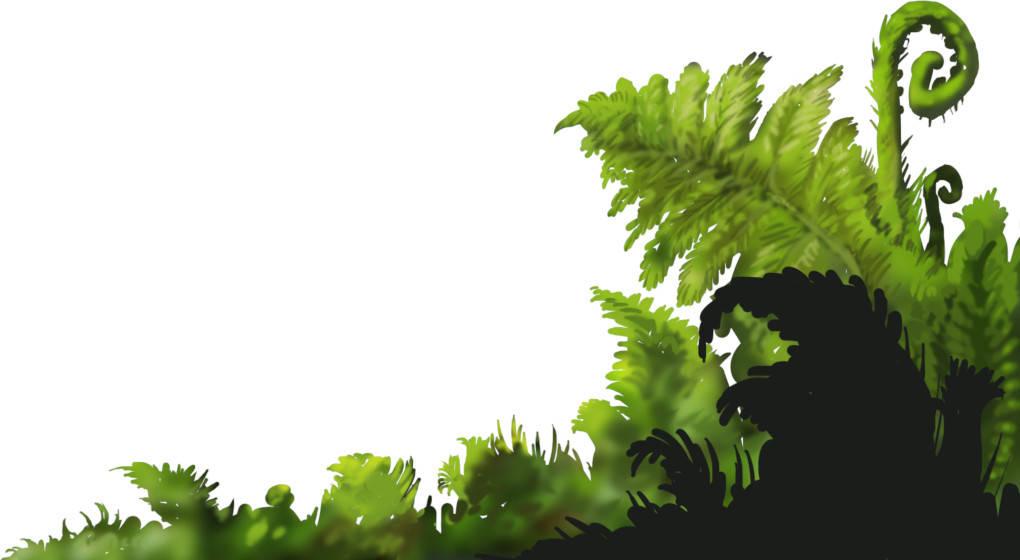 Pflanzen_vordergrund.jpeg