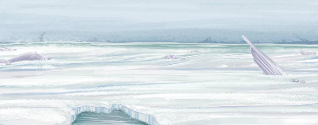 Nordpolhintergrund.jpg