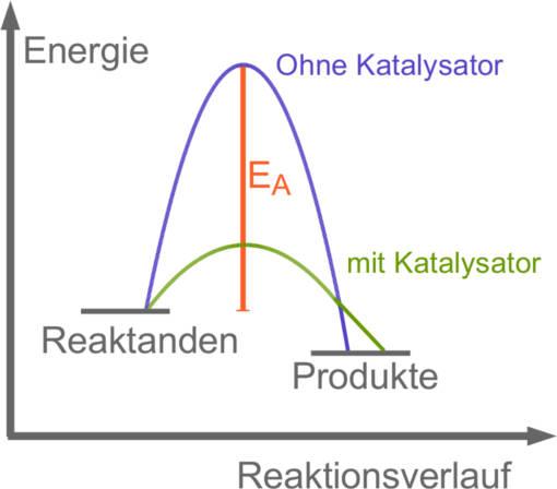 Reaktionsverlauf - Katalysator
