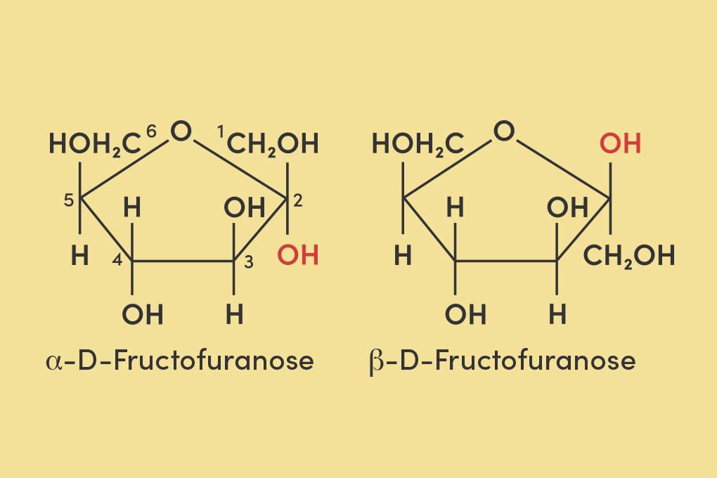 Haworth-Projektion der α-D-Fructose und der β-D-Fructose