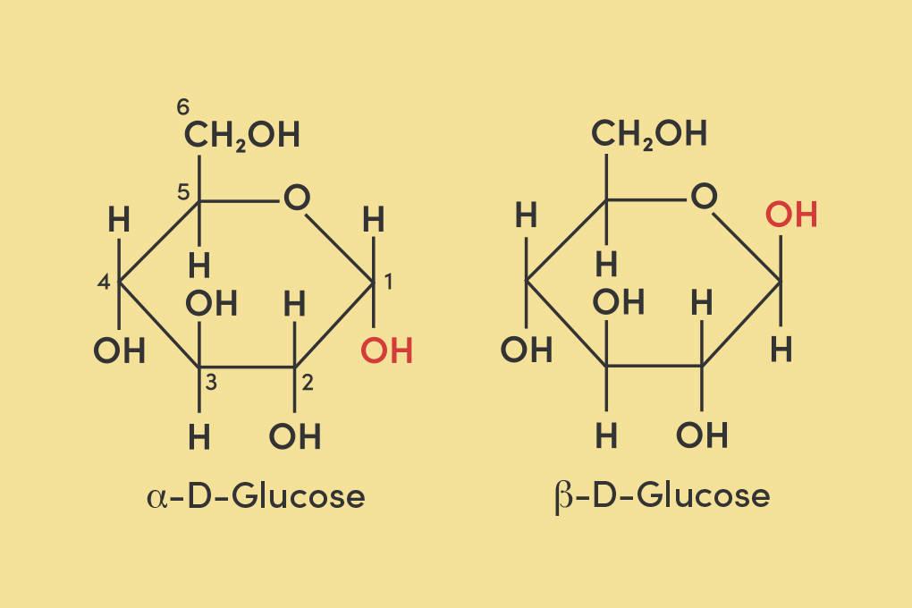 Haworth-Projektion der α-D-Glucose und der β-D-Glucose