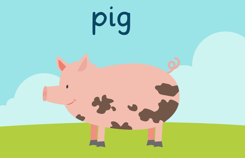 Vokabeln_Englisch_Grundschule_Pig.jpg
