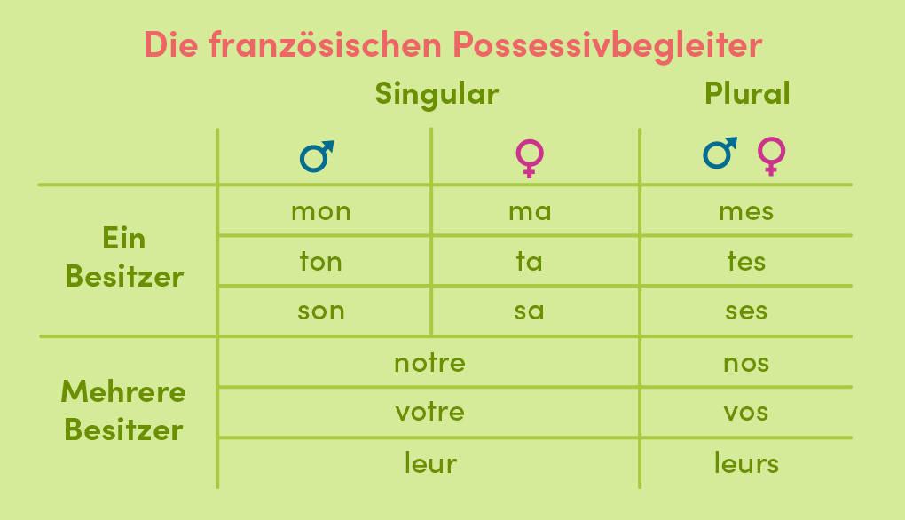 die-franzoesischen-possessivbegleiter-uebersicht.jpg
