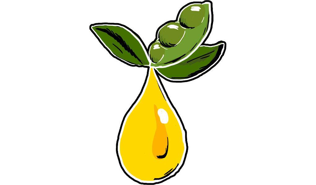 alternative Energieträger: Biodiesel