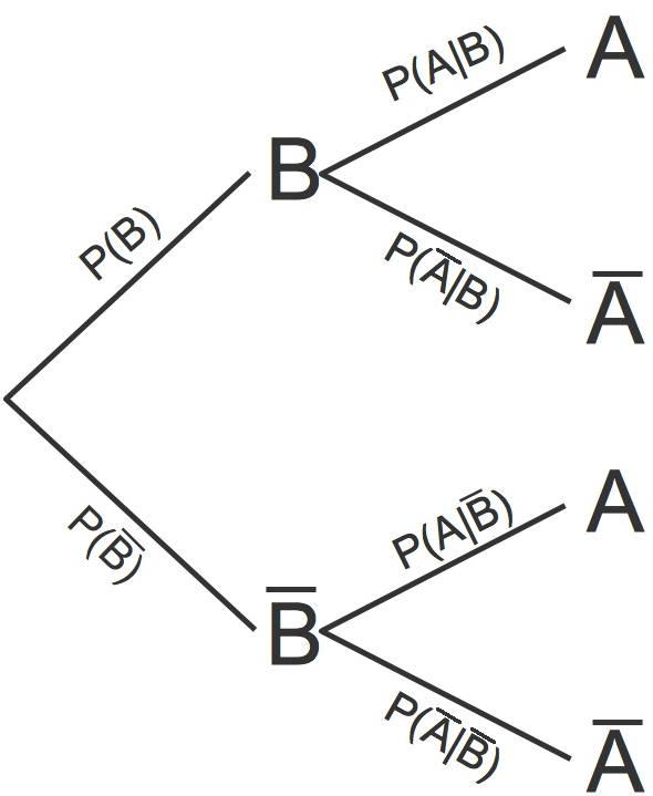 1220_Baumdiagramm_3.jpg