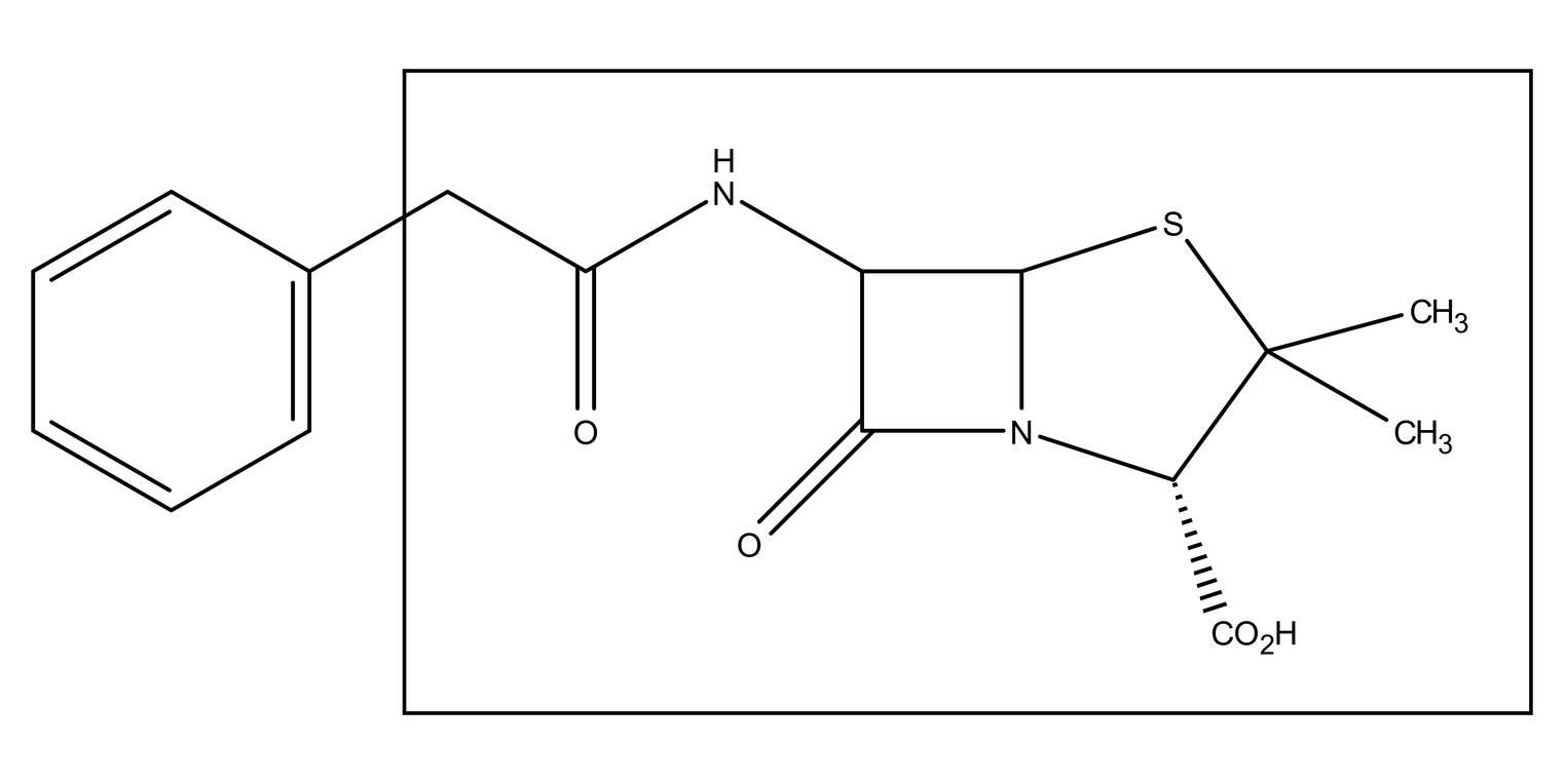 Penicillin (Übungen & Arbeitsblätter)