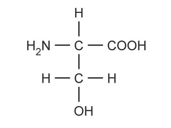 Proteine und Aminosäuren (Übungen & Arbeitsblätter)