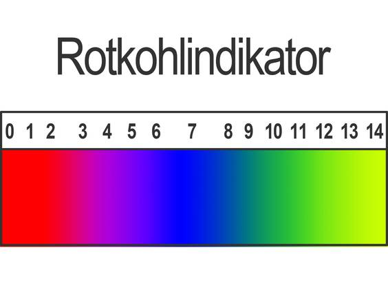 Indikatoren (Übungen & Arbeitsblätter)