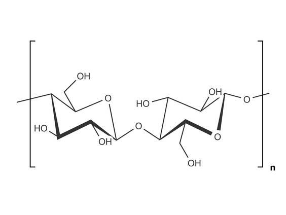 Natürliche Biopolymere (Übungen & Arbeitsblätter)
