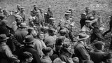 Aufstieg der NSDAP