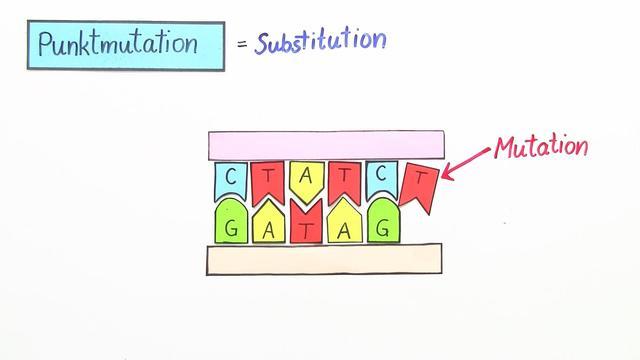 Genmutation – Formen und Ursachen