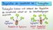 Regulation der Genaktivität bei Prokaryoten (Expertenwissen)