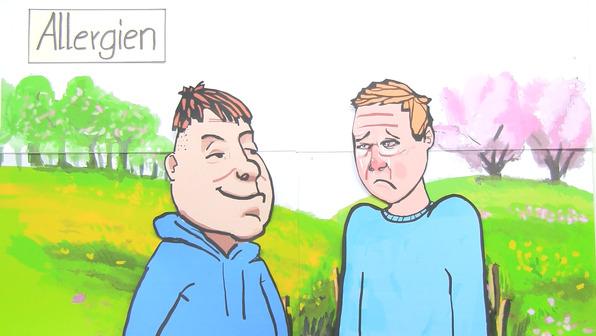 Heuschnupfen – Verlauf einer allergischen Reaktion