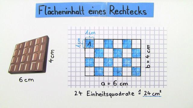 Flächeninhalt eines Rechtecks – Mathematik online lernen
