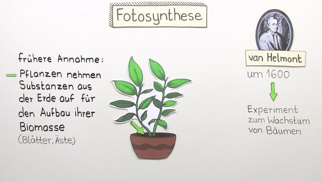 Entdeckung der Fotosynthese