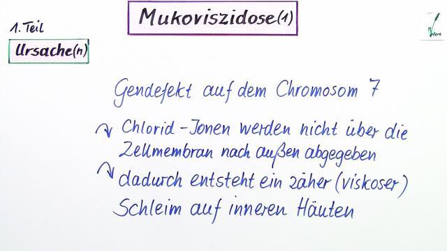 Mukoviszidose – Einfach erklärt (inkl. Übungen)