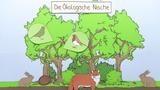 Ökologische Nische (Vertiefungswissen)
