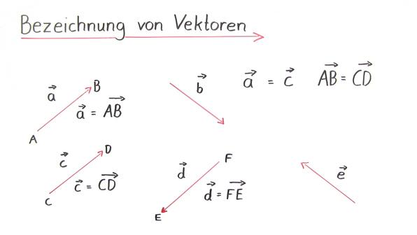 Was ist ein Vektor?