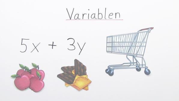 11960 terme mit unterschiedlichen variablen zusammenfassen