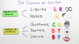 Konsonantische Deklination – Substantive