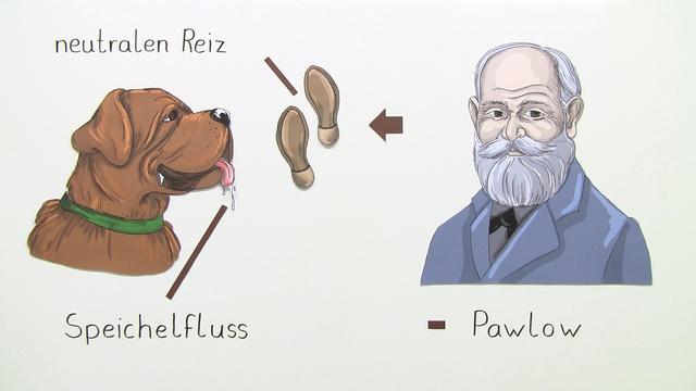 Klassische Konditionierung – Beispiel des Pawlow'schen Hundes