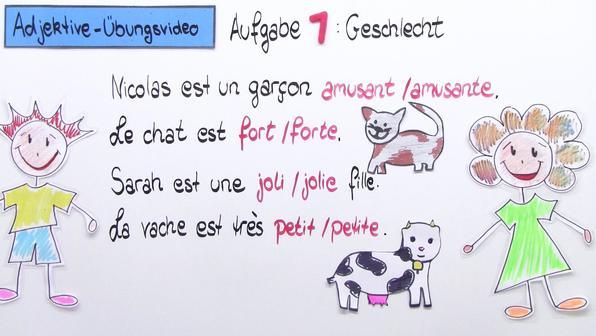Adjektive – männliche und weibliche Form im Singular und Plural (Übungsvideo)