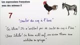 Französische Redewendungen mit Tieren