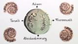 Fossilien – Entstehung und evolutive Bedeutung