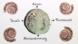 12586 fossilien.standbild006