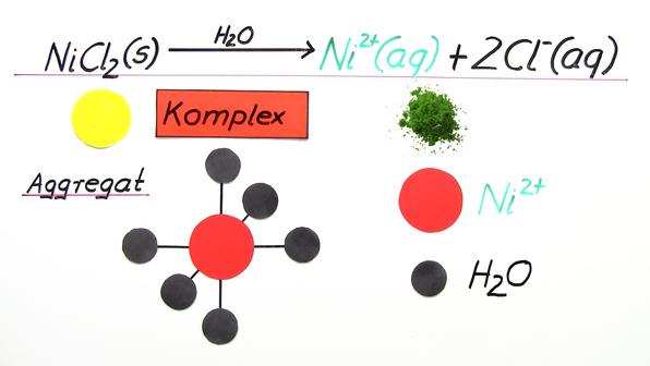 13009 904  metall ionen und komplexbildung