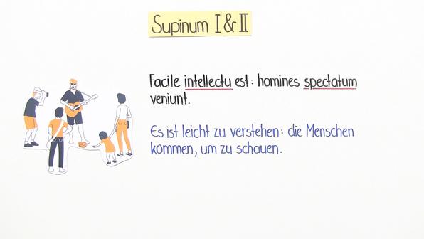 14111 supinum i und ii