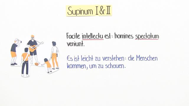 Supinum I und II
