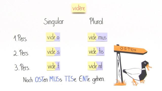 Konjugation von Verben – Einführung