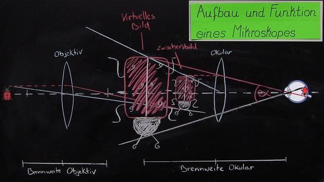 Mikroskop für kinder erforschen die natur hautnah u stockfoto